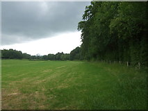 SK2640 : Farmland beside Carr Wood by JThomas