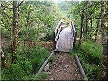NM8363 : Footbridge over Strontian River by Steven Brown
