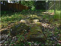 NS5372 : Roman Park: base of the Antonine Wall by Lairich Rig