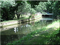TQ3187 : The New River in Finsbury Park (2) by Mike Quinn