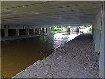 SJ7758 : Underneath the M6 motorway by Mat Fascione