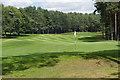 SU9666 : Wentworth Golf Course by Alan Hunt
