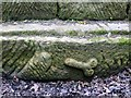 NY9170 : Carved stone at remains of Chesters Roman Bridge by Andrew Curtis