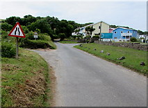 SS0197 : Road narrows sign, Stackpole Road, Freshwater East by Jaggery