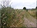 SO8394 : Seisdon Common Road View by Gordon Griffiths