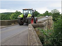 NY9170 : Chollerford Bridge by Andrew Curtis