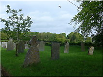 SS6138 : St Michael & All Angels church, Loxhore: churchyard (i) by Basher Eyre