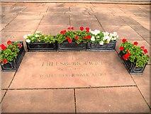 SJ3589 : Liverpool Cathedral, Hillsborough Tribute by David Dixon