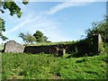 SN6083 : Roofless farm building, above Cwmcynfelin Woods by Christine Johnstone