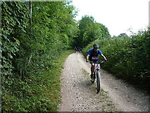 SU8217 : Riding the South Downs Way near Buriton Hanger by Richard Law