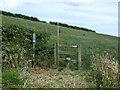 NZ7715 : Footpath near Low Borrowby by JThomas