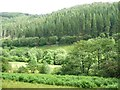 SH7506 : The valley of Afon Dulas, looking east by Christine Johnstone