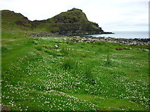C9444 : Port Ganny, Giant's Causeway by Carroll Pierce