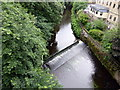 NT2373 : Water of Leith by PAUL FARMER