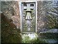 SN5976 : OSBM Flush Bracket G3305 - Coed Bont-sych, Bridge by N Scott
