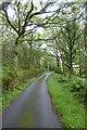 SH6236 : Road climbing through Coed Garth Byr by DS Pugh