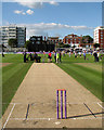 TQ2905 : Hove: between innings by John Sutton