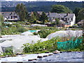 SO9293 : Allotment View by Gordon Griffiths