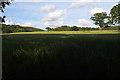 SD5047 : Farmland at Woodacre by Ian Taylor