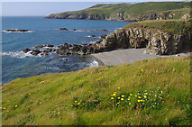 SH2989 : Church Bay / Porth Swtan by Ian Taylor