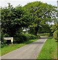 SO5102 : NE boundary of Catbrook by Jaggery