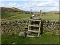 SJ9573 : Stile and erratic near Walker Barn by Dave Dunford