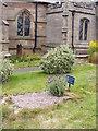 SJ7907 : Little Nell Grave by Gordon Griffiths