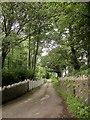 SX7464 : Driveway, Bigadon by Derek Harper