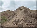 TA0784 : Sand Martin Holes, Cayton Bay, Yorkshire by Christine Matthews