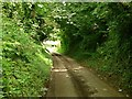 SK3137 : Gold Lane by Alan Murray-Rust