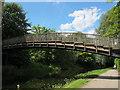SE2535 : Footbridge at Kirkstall student residence by Stephen Craven
