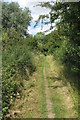 TL0948 : Bridleway to Cople by Philip Jeffrey