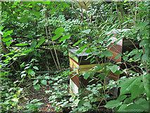 SE2535 : Hollybush Conservation Centre: beehives by Stephen Craven