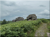 SE8791 : Bridestones, Stain Dale Moor, Yorkshire by Christine Matthews