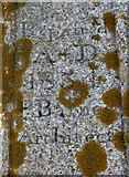 TG4001 : The Hardley Cross (inscription) by Evelyn Simak