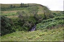 NS5077 : Waterfall on Craigton Burn by Richard Sutcliffe