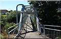 NS3238 : Footbridge over the River Irvine by Billy McCrorie