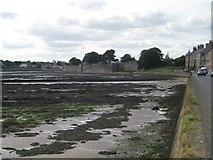 NU0052 : Berwick ramparts at low tide by Nigel Thompson