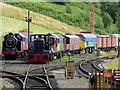 SJ9851 : Railway sidings near Cheddleton, Staffordshire by Roger  Kidd