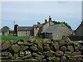 NY9579 : Thockrington Farm by JThomas