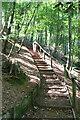SX4551 : Steps on the coast path, Warren Plantation by Derek Harper