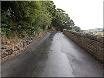 SE0424 : Greystones Road - viewed from Danny Lane by Betty Longbottom