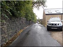 SE0424 : Warley Wood Lane - John Naylor Lane by Betty Longbottom