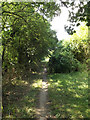 TL0752 : Bridleway to Wentworth Drive by Adrian Cable