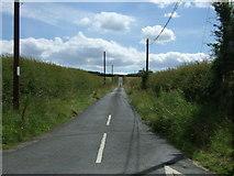 NY9874 : Minor road towards Bingfield by JThomas