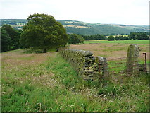 SE0322 : Path junction between Sowerby bridge FPs100 and 141 by Humphrey Bolton