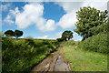 NY2038 : Farm lane near to Whitrigg by Trevor Littlewood