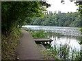 SJ6886 : Boardwalk, Lymm Dam by Dave Dunford
