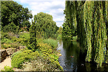 TQ2882 : Lake in Queen Mary's Garden by Chris Heaton