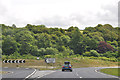 SX2264 : Cornwall : The A38 by Lewis Clarke
